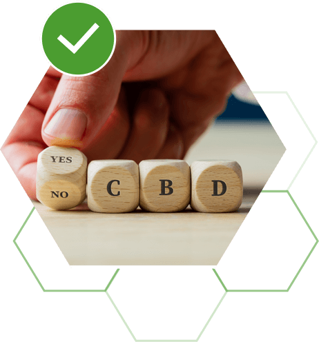 How Do I Choose the Right CBD Product for Me?